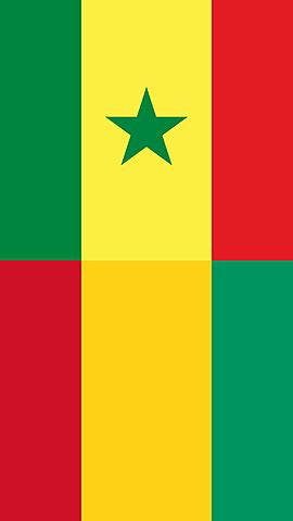 L'Àfrica negra francesa