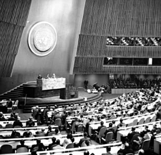Paper de l'ONU