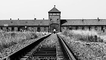 Aparició dels primers centres de concentració.