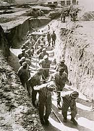 Sistema de camps de concentració nazi