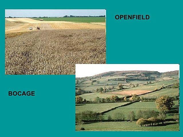 Sistemes principals d'explotació agrícola