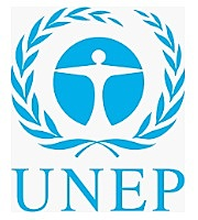 Creación de la UNEP