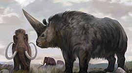 Especies  extintas timeline