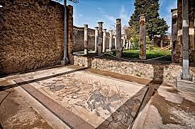 CASA DEL FAUNO (Pompei)