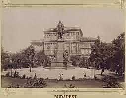 Magyar Tudományos Akadémia tagjává választja