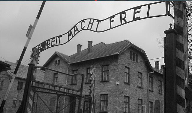 Característiques particulars dels règim totalitari (II)