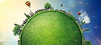 Criação e aprovação da Lei do Ambiente