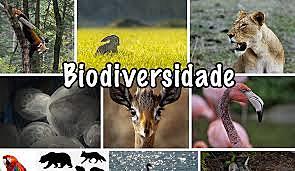 Biodiversidade nas áreas de conservação