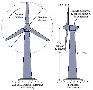 le rotor de l'éolienne
