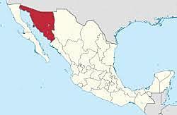 Los campesinos invaden tierras del latifundio Cananea en Sonora.