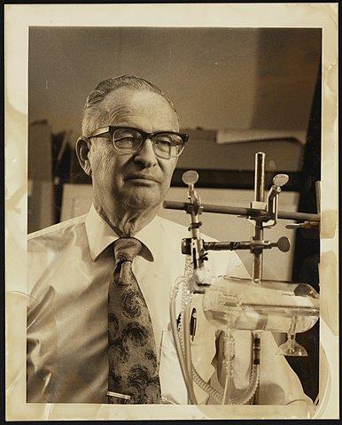 Wilbur Kaye
