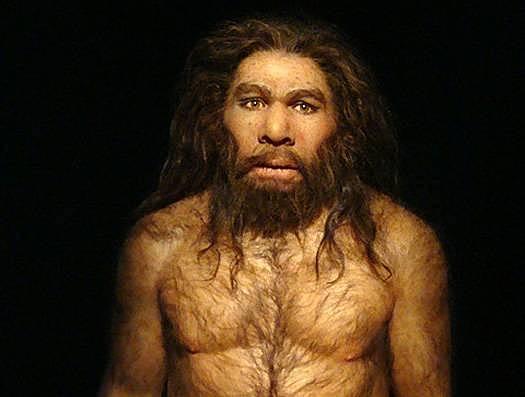 homo neandenthalensis