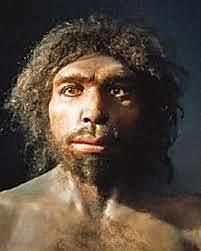 homo antecesor hace 800.000 años