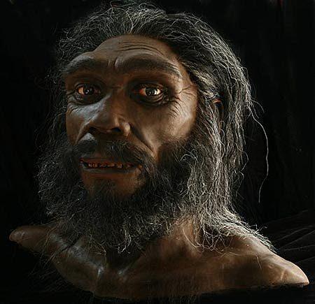 Homo Heidelbergensis hace 500.000 años