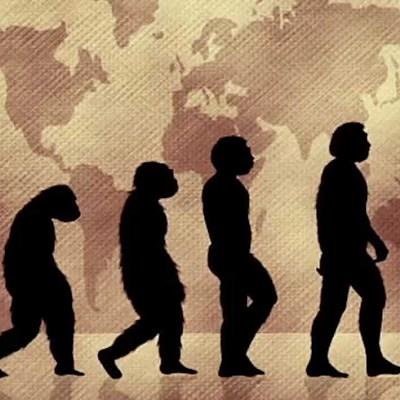"""""""Posturas de la evolución"""" timeline"""