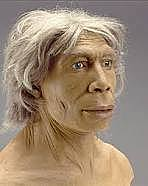 aparición del Homo neanderthalensis