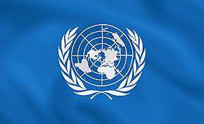 L'Organització de les Nacions Unides