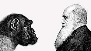 La biología darwiniana (teoría de la evolución)