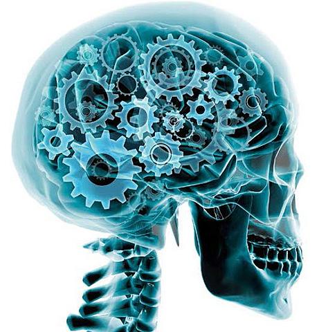 Neurofisiología (Lorente de No)