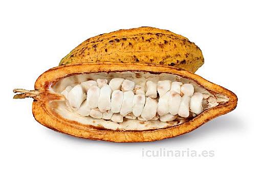 Colón Conoce el haba de cacao