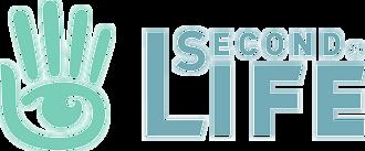 Avènement du jeu Second life
