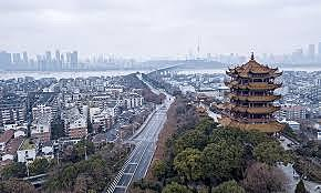 Expert conducted a brief field visit to Wuhan.