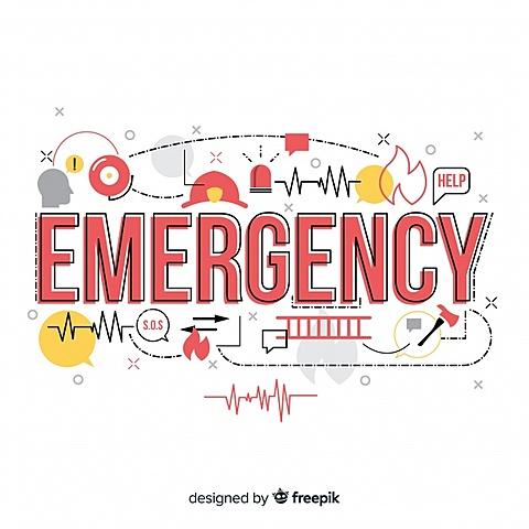 Emergency committee