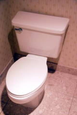 Termont hotel..the first hotel to have a flush toilet.