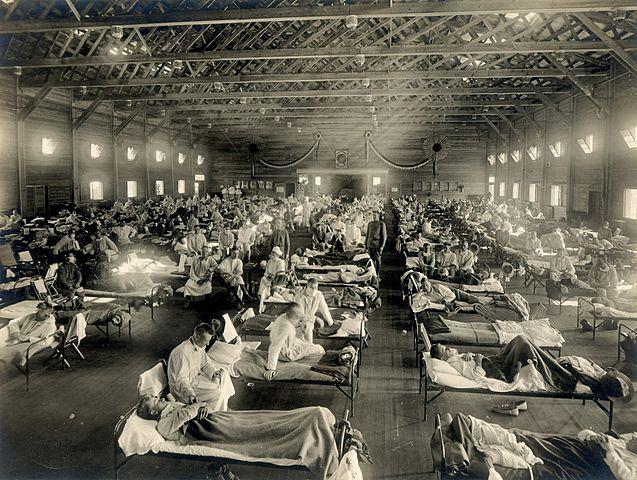 La gran Influenza
