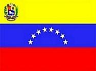 Bandera de 2006 (actual)
