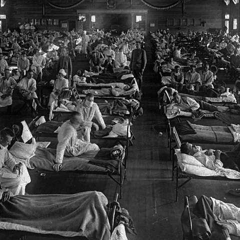 The Spanish Flu Epidemic (Social Change) (-1)