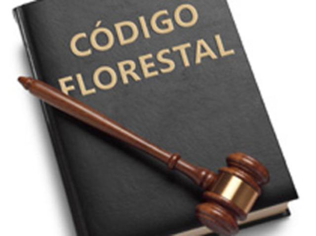 Editado o primeiro Código Florestal