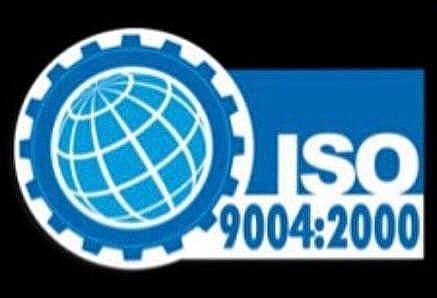 ISO 9004 DE 2000