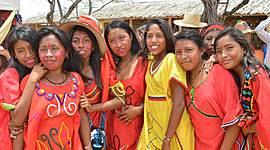 Reconocimiento de la diversidad INDIGENA timeline