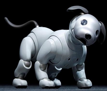 Aibo (perro robot)