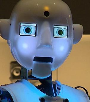 Robotica inteligente