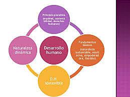 Definiciones en desarrollo (Amaro: 1999: p. 38)