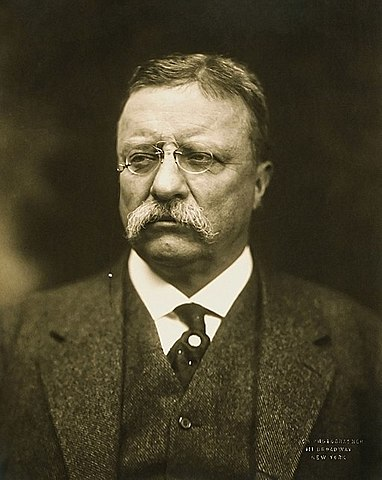 Theodore Roosevelt Becomes US President