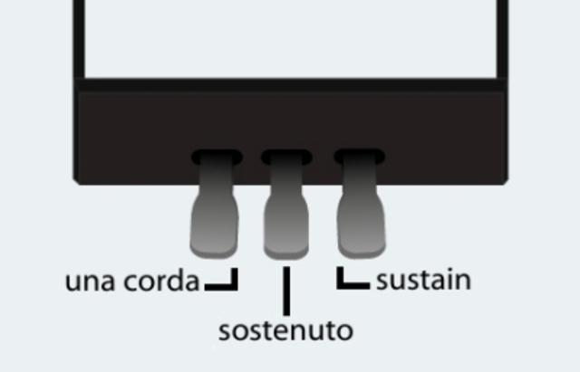 Sostenuto pedal