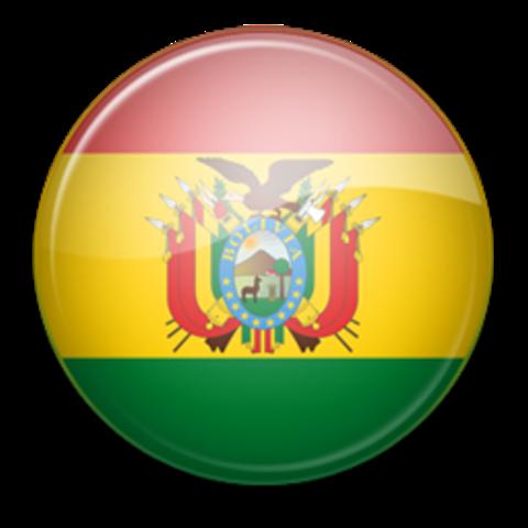 Apoyo al Proceso Electoral en BOLIVIA