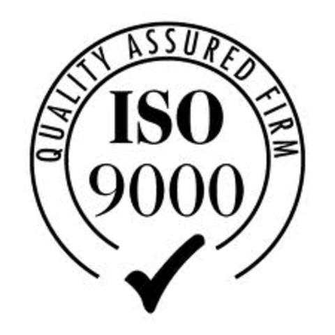 incrementa las acitividades ISO 9000