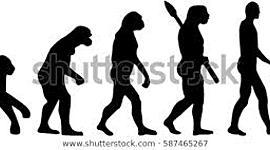 Historia de la Enfermería y su Evolución; por: Patricia Mendoza Jimenez timeline
