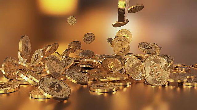 Introducción de la Moneda