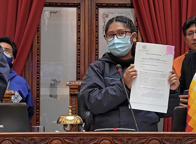 El Tribunal Constitucional rechaza consulta de Añez sobre leyes de alquileres y de plasma