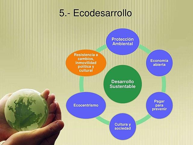 5 DIMENSIONES ECODESARROLLO