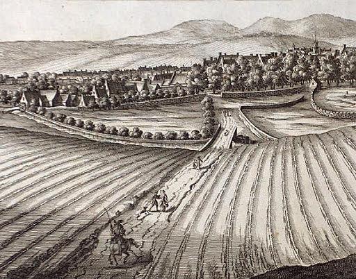 Jordbrukrevolusjonen
