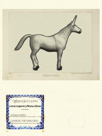 Equus Steeli
