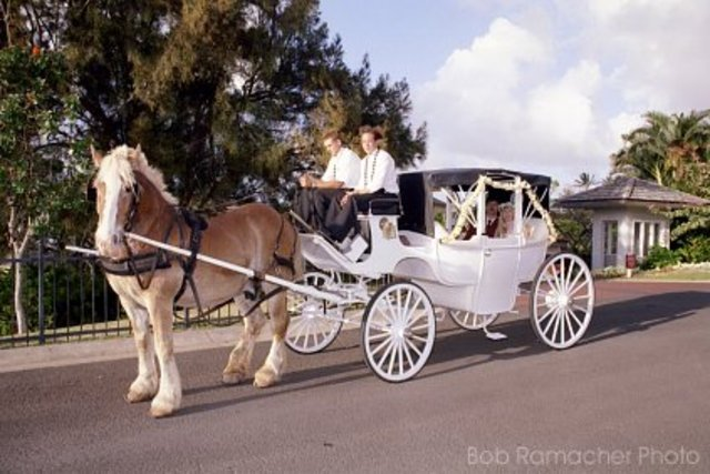 The last day horse and buggy carriages where the most common way to get around in America.
