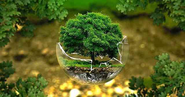 Estándar de sistema de gestión ambiental, ISO 14001
