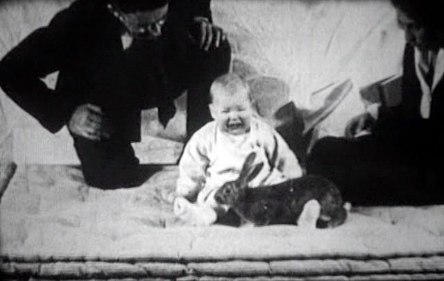 the Little Albert experiments
